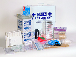 Canada Labour Code–compliant First Aid Kit for 6–19 employees. Click on the picture to enlarge it.